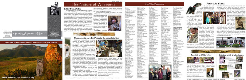 Folding Brochure for the Nature of Wildworks