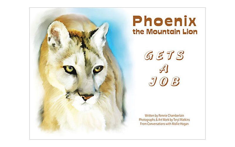 Phoenix Gets a Job - book