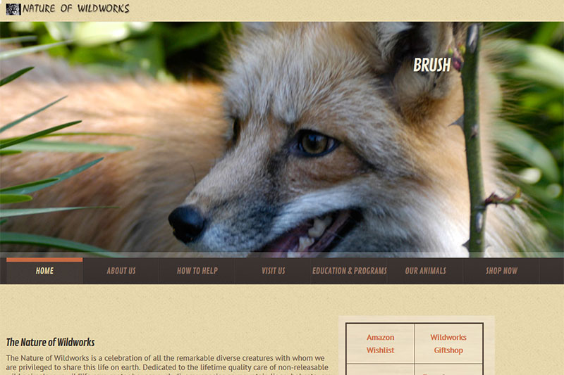 The Nature of Wildworks